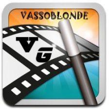cropped-vasso-logo23.jpg